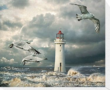 Perch Rock lighthouse on The River Mersey at New Brighton. It was quite a stormy day and this is a composite of several images I took there, with textures added and a little help from Topaz Simplify and Adjust. The gulls are Herring Gulls. / Featured in A Place To Call Home / Featured in Absolute Clarity • Buy this artwork on stationery y wall prints.