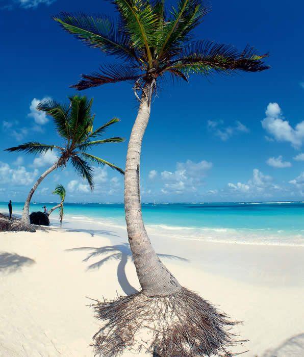 Tauchreisen Karibik, Tauchen Dominikanische Republik