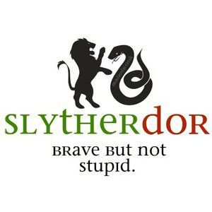 Slytherdor | Which Hogwarts Hybrid House are you In - Quiz