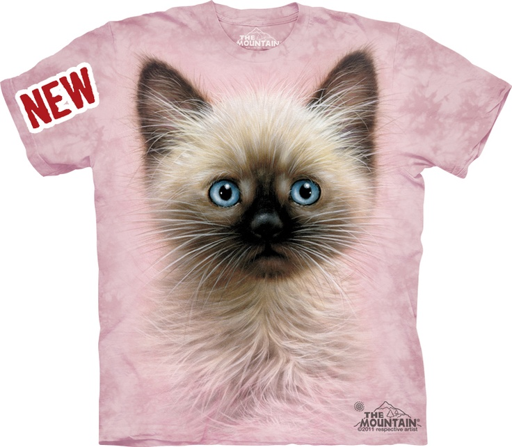 Big Face Black And Tan Kitten « Epic Shirts  The siamese cat is (like most creatures) cutest as a baby kitten. The colors and motive of this shirt is well suited for grown men who loves small pussies. Order your own now and show your that little miaaav!