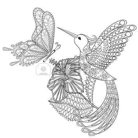 Hand drawn tribal volant papillon Hummingbird en hibiskus pour les pages colorier anti stress adulte Banque d'images