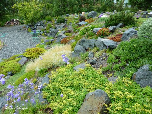 How To Landscape On A Slope With Rock : Wasilla alaska rock garden gardening gardens