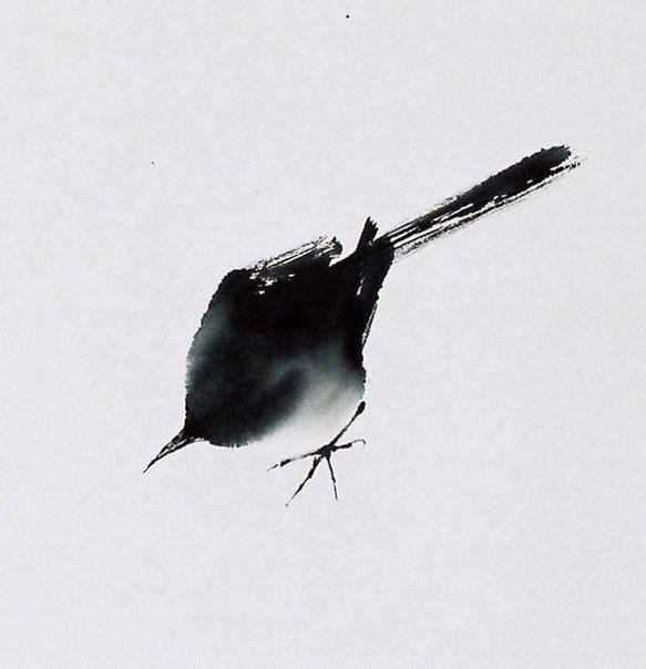 lat_elenka Endre Penovac.  Bird in ink or watercolor