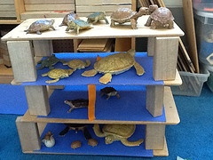maak aquariumhokken  voor de zeedierenI> chose this block play where sea life and blue paper as water is added. It gives the children the opportunity to build homes for sea creatures.