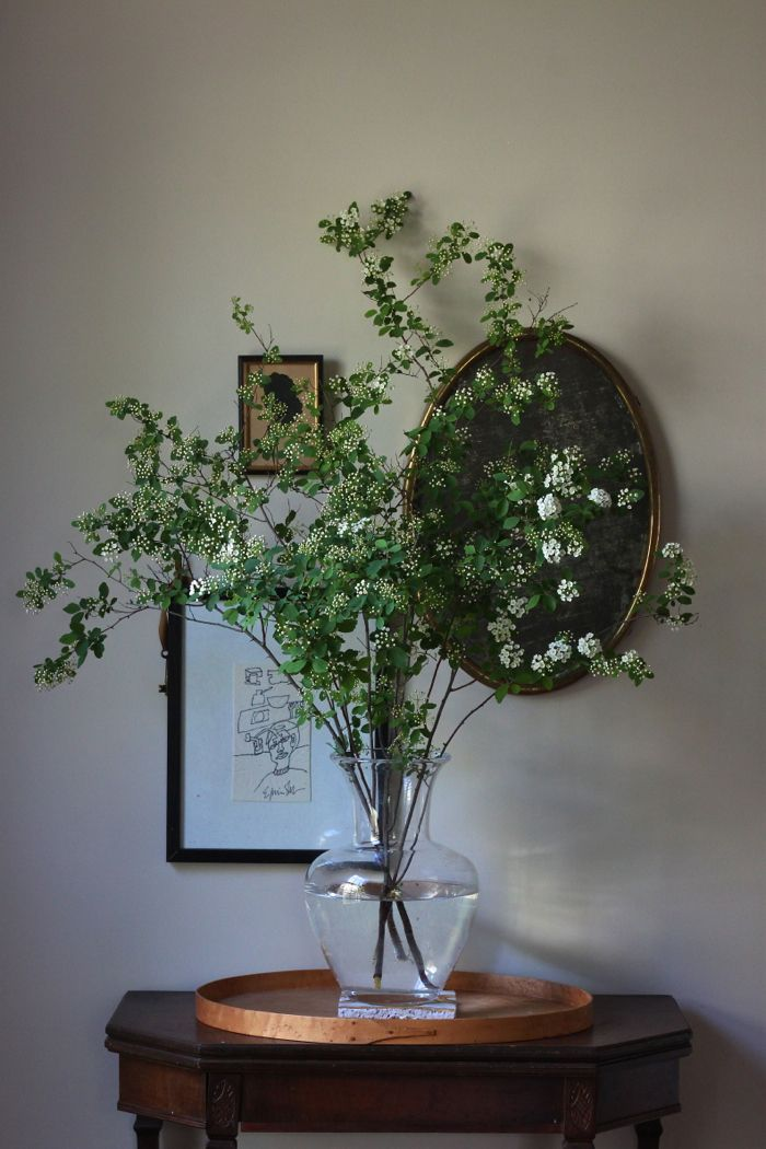 #florals at home...  http://rstyle.me/n/kbrhgnqmn