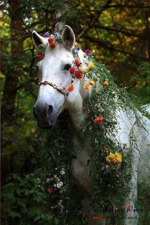 Fairy Horse... reminds me of the princess's magical white horse in the Grimm fairytale http://en.wikipedia.org/wiki/The_Goose_Girl (that story always made me cry)