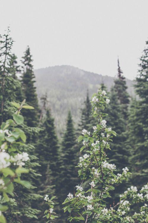#nature #feelingsmall #adelineloves