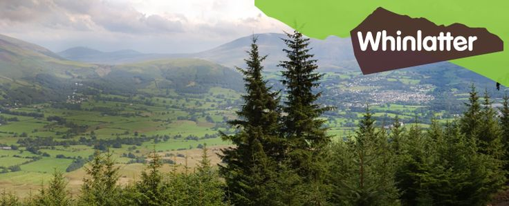LAKE DISTRICT - WHINLATTER FOREST PARK (Whinlatter Forest Park, Keswick, Cumbria CA12 5TW ‎ 017687 78469)