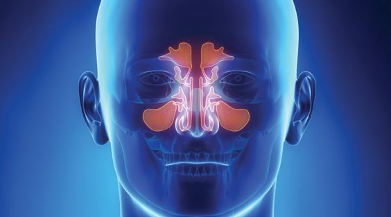 Fungal Infections and Sinus Problems - Life Extension