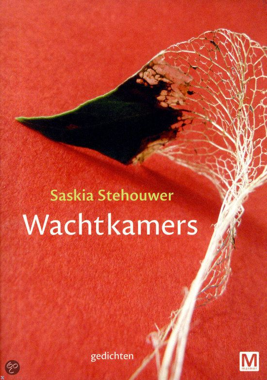 Saskia Stehouwer - Wachtkamers