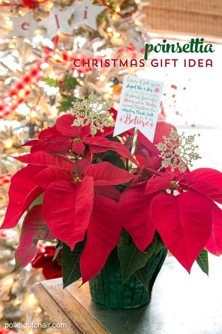 A free printable and cute Christmas neighbor gift ideas including a poinsettia poem. Cute ways to gift a poinsettia for Christmas.