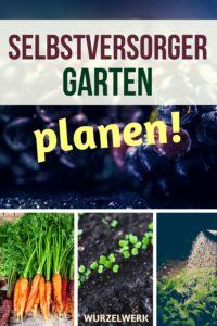 Selbstversorger-Garten planen: So erstellst du deinen 4-Jahres-Plan
