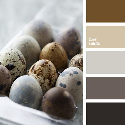 Gray brown is shaded by brown transitions  it is perceived well by the eyes  in a bright lit area  The effect of dusted color is appropriate in the  things aBest 25  Gray and brown ideas that you will like on Pinterest  . Grey Brown Paint. Home Design Ideas