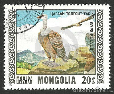 Mongolia - stamp printed in1976, Multicolor memorable edition offset printing, Topic Fauna and Predator birds, Series Birds of prey, Griffon Vulture, Gyps fulvus