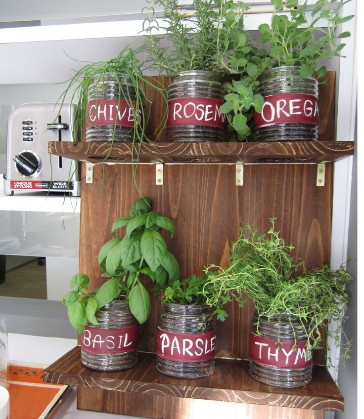 Year-round indoor herb garden