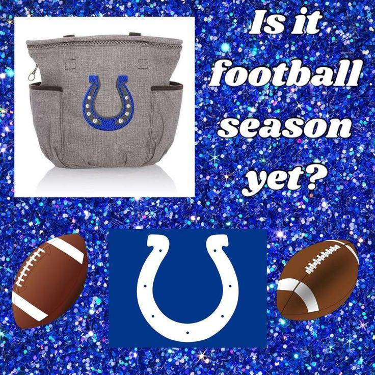 Retro Metro Bag and the Indianapolis Colts www.baldwinbaglady.com