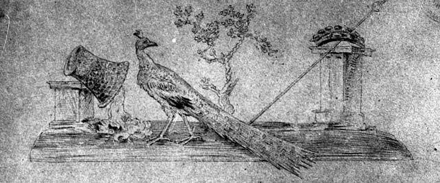 IX.8.6 Pompeii. W.1452. Drawing of wall painting of attributes of Juno, from peristyle.    Photo by Tatiana Warscher. Photo © Deutsches Archäologisches Institut, Abteilung Rom, Arkiv.    See http://arachne.uni-koeln.de/item/marbilderbestand/231880