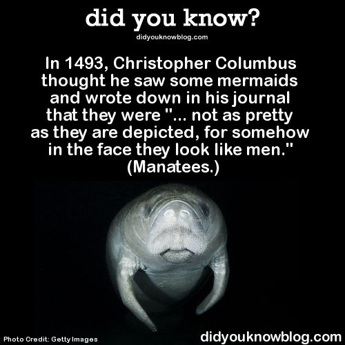 Guess what my name is. Mana. Guess what my last name starts with. T. Yes. I am a manatee.