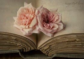 roseOld Book, Antiques Book, Open Book, Vintage Book, Vintage Pink, Rose Tattoo, Pink Rose, Vintage Rose, Flower