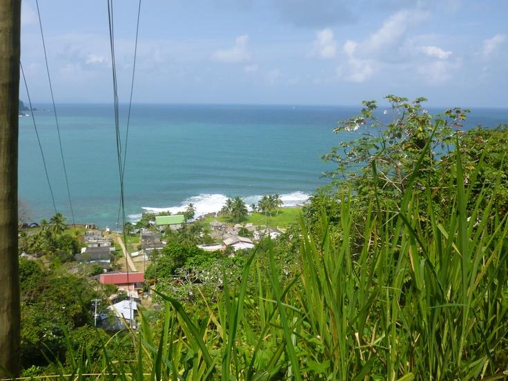 La Miel. Panamá.