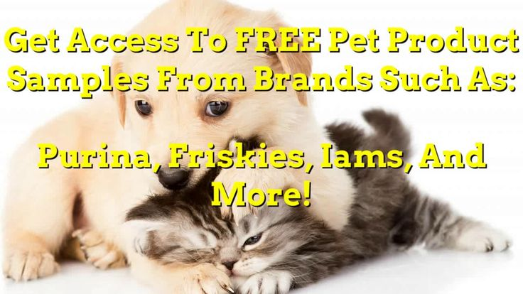 [2017] Get Access To FREE Pet Purina One Dog Food Friskies Iams Samples (#MB9667)