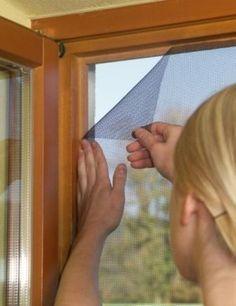 Protege tu ventana con un mosquitero                                                                                                                                                                                 Más