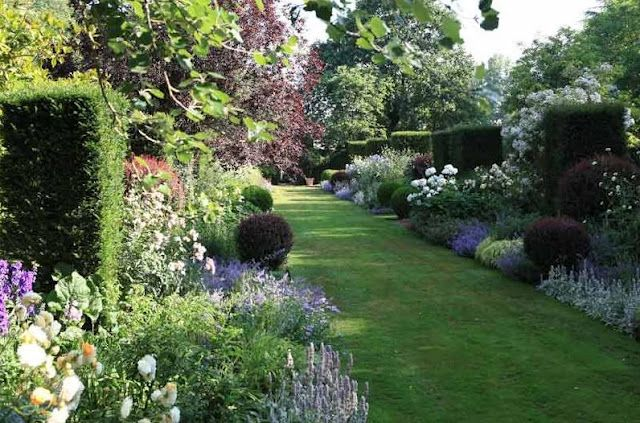 I love the formality of the shaped hedges and the informality of the flower beds. A dreamy garden!