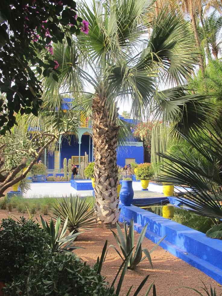 19 best gardens jardin majorelle marrakech images on pinterest morocco marrakech morocco. Black Bedroom Furniture Sets. Home Design Ideas