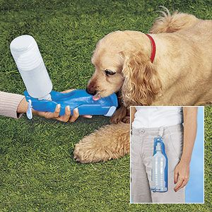 "Product # HC4266 - Gives your favourite four-legged pal a welcome drink anywhere! Lightweight canteen is the perfect companion on road trips or long walks on hot days. When pet gets thirsty, just snap open and pour water from bottle into the attached serving dish. Clip to your belt or hang over the shoulder with included 60""L cord. Leak-proof BPA-free bottle holds 17oz. Bottle is 10""H. $12.98"