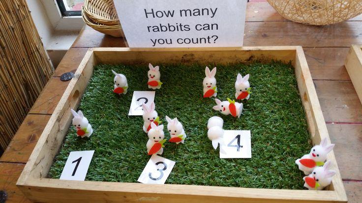 Counting rabbits at Chadwell Pre-school