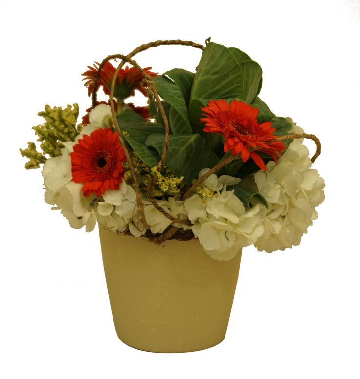 Best 26 Go Eco-Friendly! images on Pinterest   Eco friendly, Floral ...