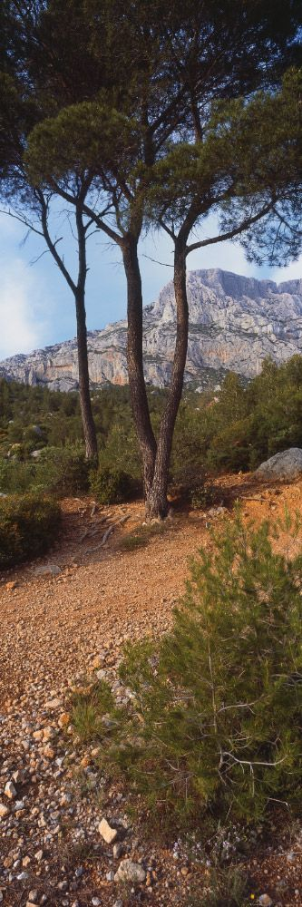 Sur les pas de Cézanne, Sainte-Victoire (Bouches-du-Rhône) this beautiful mountain is just at the edge of Aix...