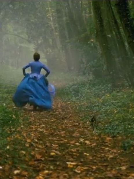 Madame Bovary (2014), played by Mia Wasikowska, directed by Sophie Barthes, (TO SEE)