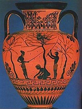 Anfora griega donde se escenifica la recogida de la aceituna y se guardaba el aceite de oliva.