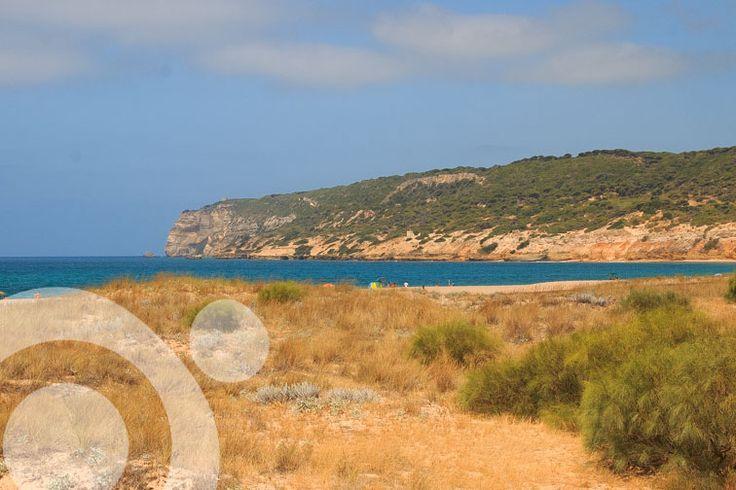 La Breña y Marismas de Barbate Natural Park. More information to plan your trip to #Barbate in www.qnatur.com
