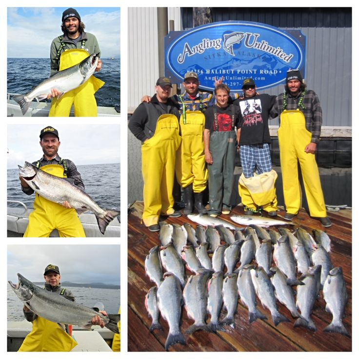 Sitka Fishing Report 8/20: The Richardson party completed four days of fishing with Captain David today and caught two 20-pound silvers during their trip. Big silvers are here! Read about the rest of their trip in our latest report.