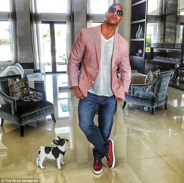Animal guy: Former pro-wrestler Dwayne 'The Rock' Johnson, 43, has always loved animals
