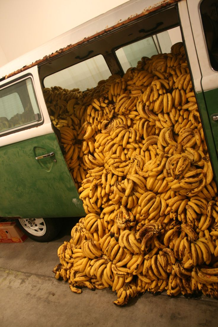 Writing Prompt: Oh Bananas! What happened here?