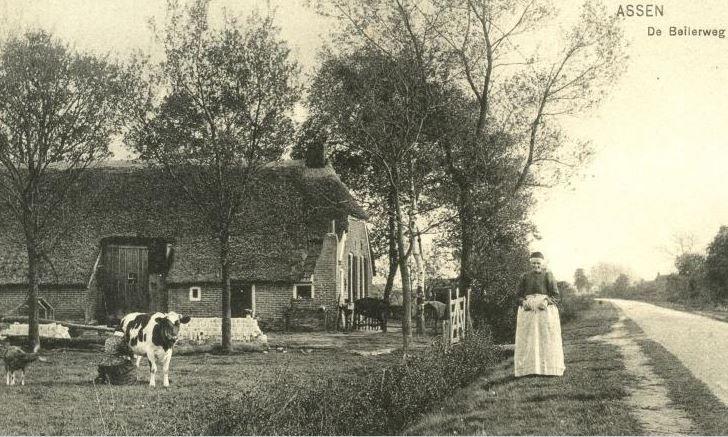 Een boerderij aan de Beilerweg (later Graswijk) te Assen, vermoedelijk gezien in zuidelijke richting. Bij de weg staat Martha Lolkema en links is haar zuster Roelfien Lolkema (1851-1924, weduwe van B. Lunshof) aan het melken, vermoedelijk op een stuk land bij de overburen. De dames woonden (later) zelf op Beilerweg 10 (later Beilerstraat 44 en 46), de boerderij waar later Bartelds woonde (de bocht van Bartelds, voormalige TT-baan). kaart 1908-1911 #Drente
