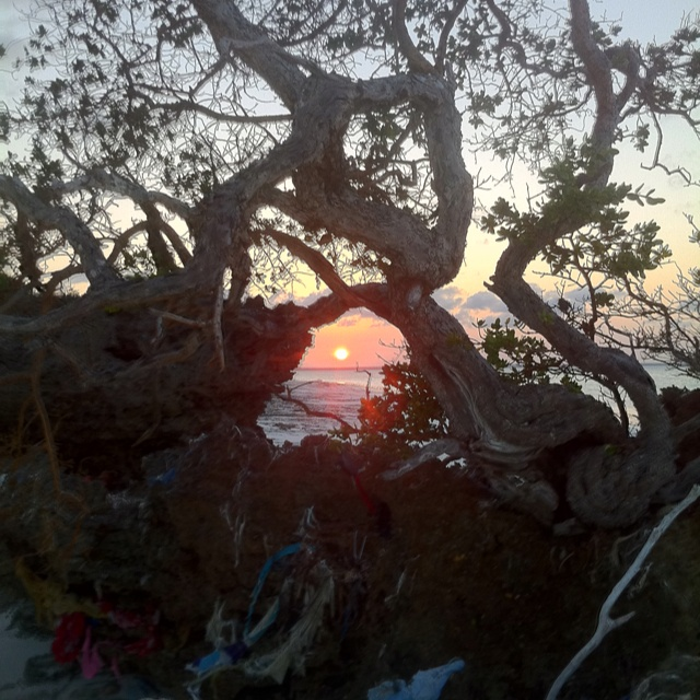 Best sunset in Zanzibar