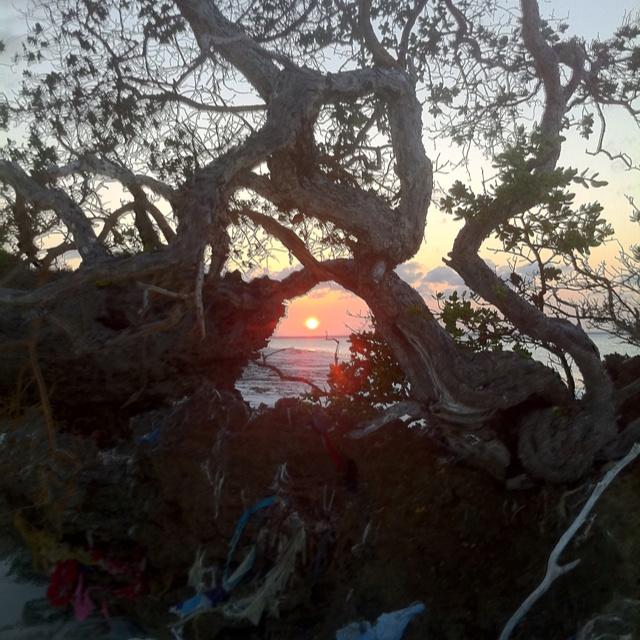 Best sunset in Zanzibar