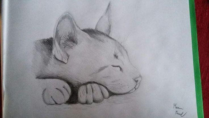 24_11 Cat My drawing