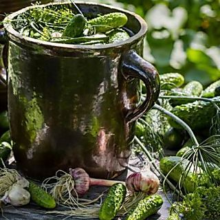 Kovászos uborka - krumplival érlelt alternatíva Recept képpel - Mindmegette.hu - Receptek