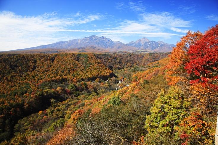 紅葉に彩られる八ヶ岳。