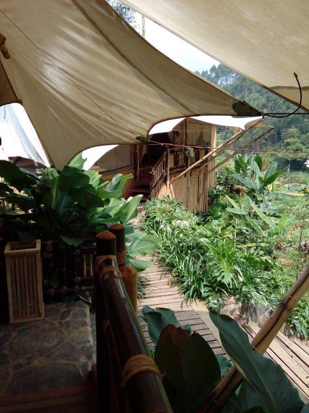 Back to nature with legok kondang