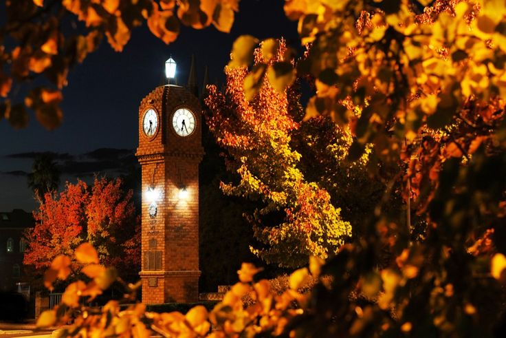 A photo of the Mudgee Town Clock in Autumn. Photo by Amber Hooper.