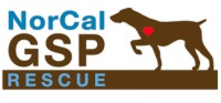http://www.norcalgsprescue.com/  Great site if your looking for a rescue... also if you want to donate in memory of a dog or person