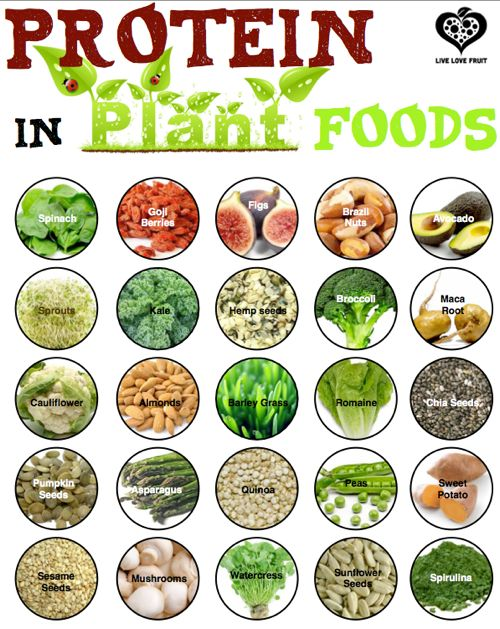 Which Vegetables Contain Protein 79 best food facts trivia images on pinterest food facts trivia food fact every yes every whole food contains protein finding plants packed workwithnaturefo