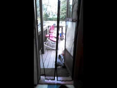 Bug Out Magnet Mesh Screen Door Review | http://2geekygirls.com/2013/04/08/bug-out-magnet-mesh-screen-door-review-purchase-from-nomorerack/