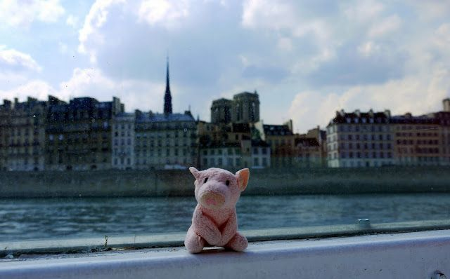 Misterpiggy Goes to France: Day 9: Lyon to Paris